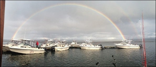 Dock-Rainbow1w.jpg