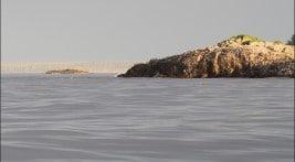 Bird Rock and Cape Naden