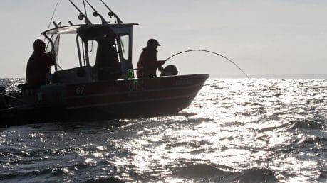 salmon-fishing-1