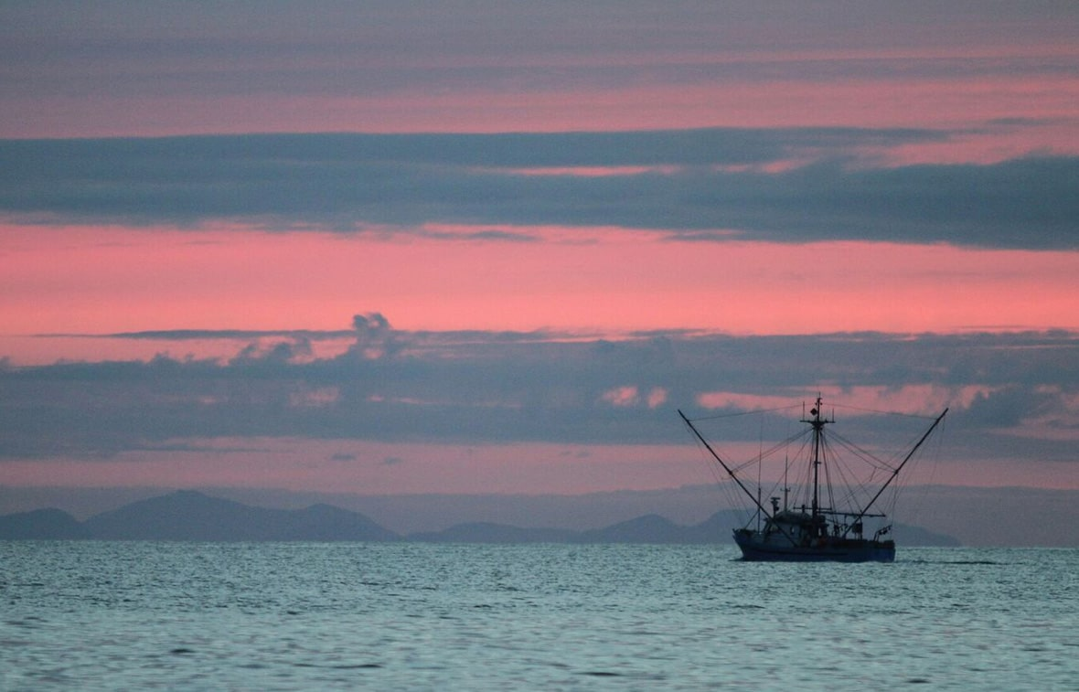 Experience Legendary Fishing in BC's North West Coast sunset with a boat in distance