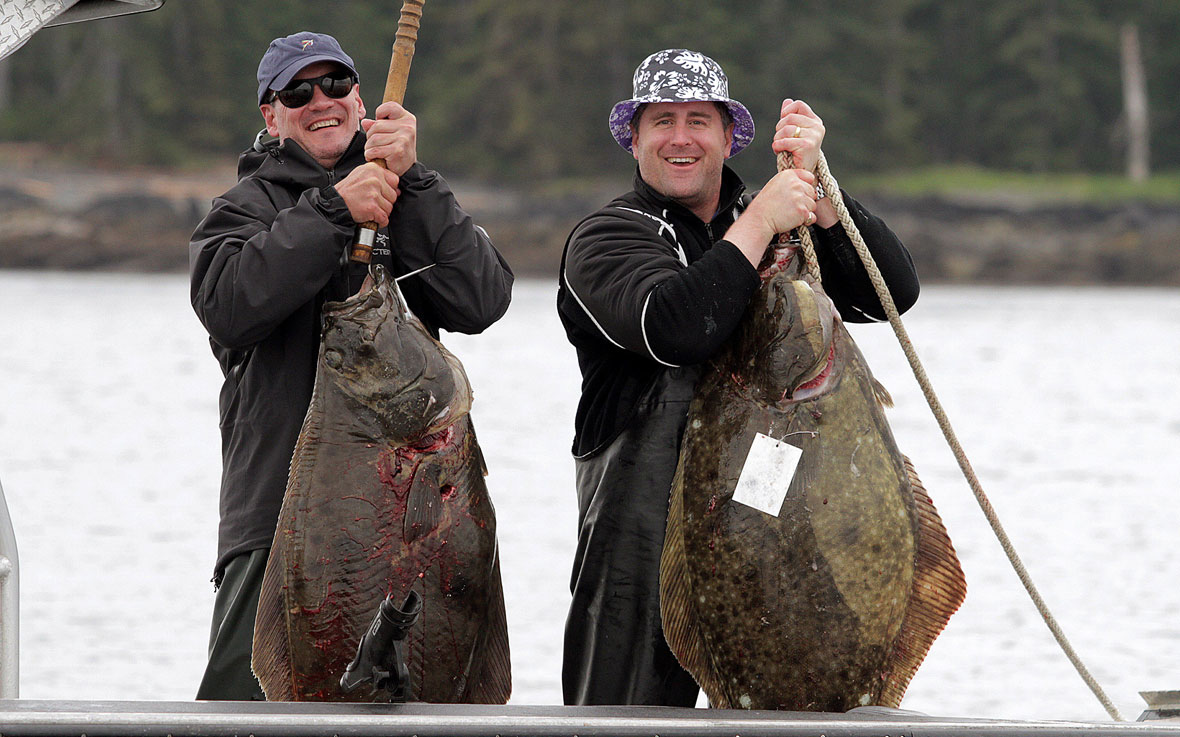 Salmon and halibut self-guided fishing