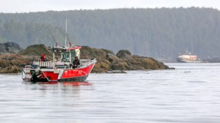 Chinook salmon fishing at QCL