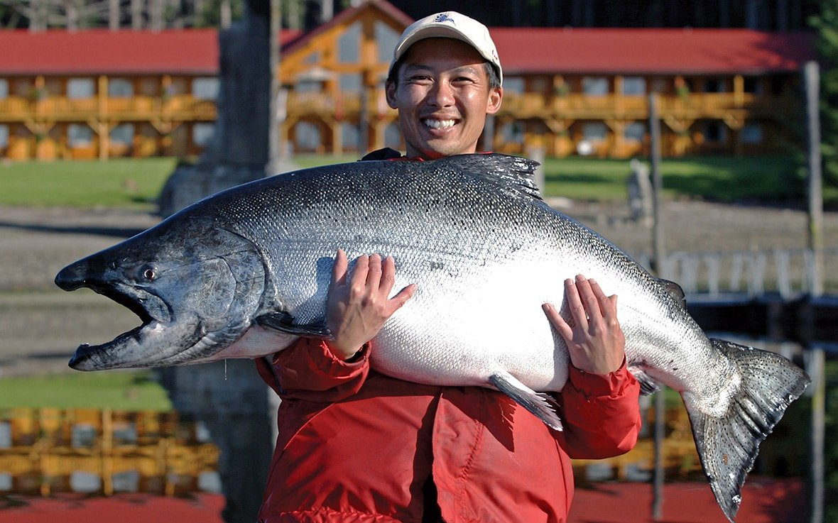 Incredible 76 lb. Chinook salmon