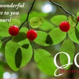 Merry Christmas from QCL