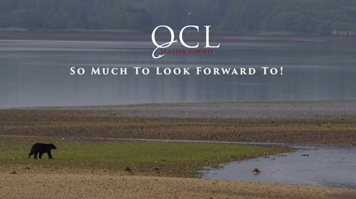 QCL-Looking-Forward-1.jpg